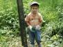 Waldpflegetag